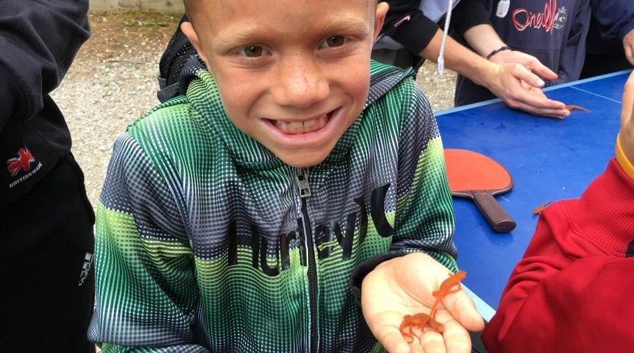 Boy holding a salamander